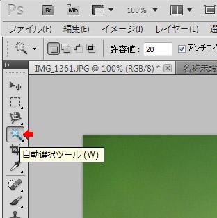 as0005.jpg
