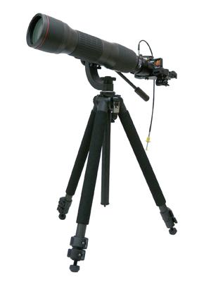 Nikon_EDG85-QS_s.jpg