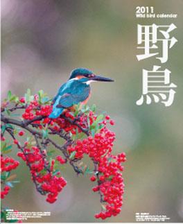 db20110222_hyoushi.jpg