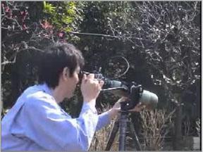 ginbal_video.jpg